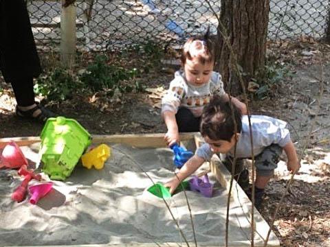 معرفی مدرسه طبیعت باغ کودکی
