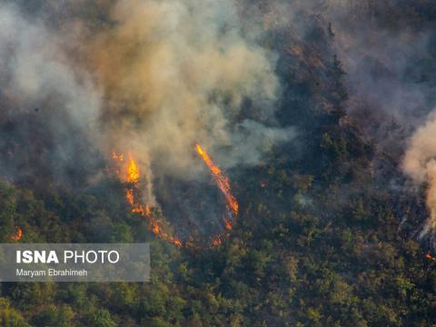آتش در جنگل ارسباران