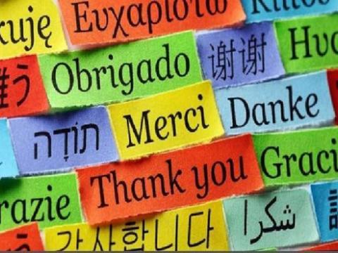 پرکاربردترین زبانهای دنیا کدامند؟